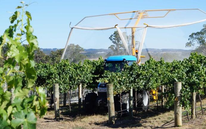 vitiworks-vineyard-management-netting-adelaide-hills-6
