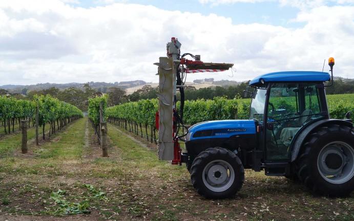 vitiworks-vineyard-management-trimming-adelaide-hills-2